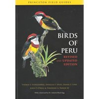 Birds of Peru (Schulenberg...)