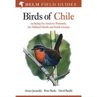 Birds of Chile (Jaramillo, Burke, Beadle)