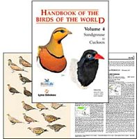 Handbook of the Birds of the World. HBW vol 4 (del Hoyo...)