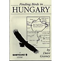 Finding birds in Hungary. Gostours guides.