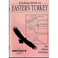 Finding birds in Eastern Turkey. Gostours guides.