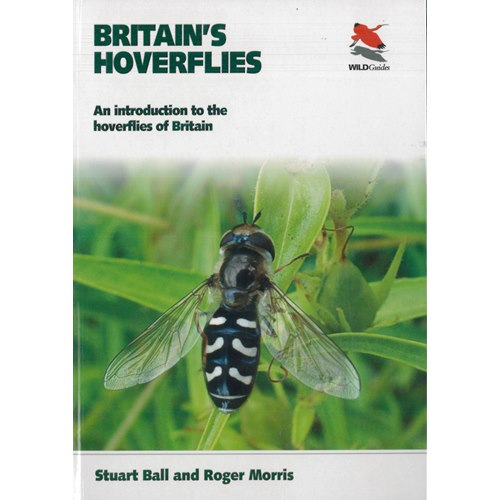 Britain's Hoverflies: Introduction to Hoverflies of Britain