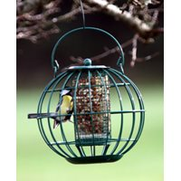 Peanut Feeder London 21 cm