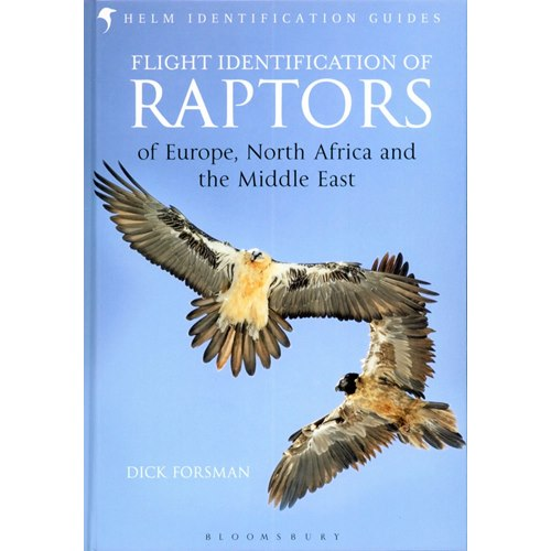 Flight identification of Raptors (Forsman)