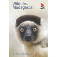 Wildlife of Madagascar (Behrens)