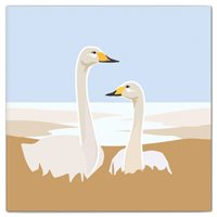 Double Card Whooper Swans