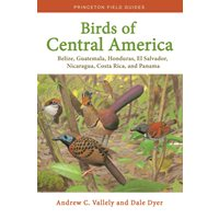 Birds of Central America (Valley & Dyer)