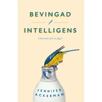 Bevingad intelligens - pocket (Ackerman)